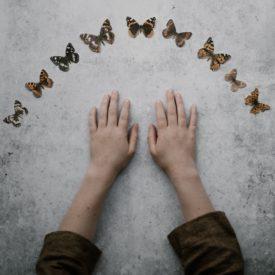 hand papillon 2