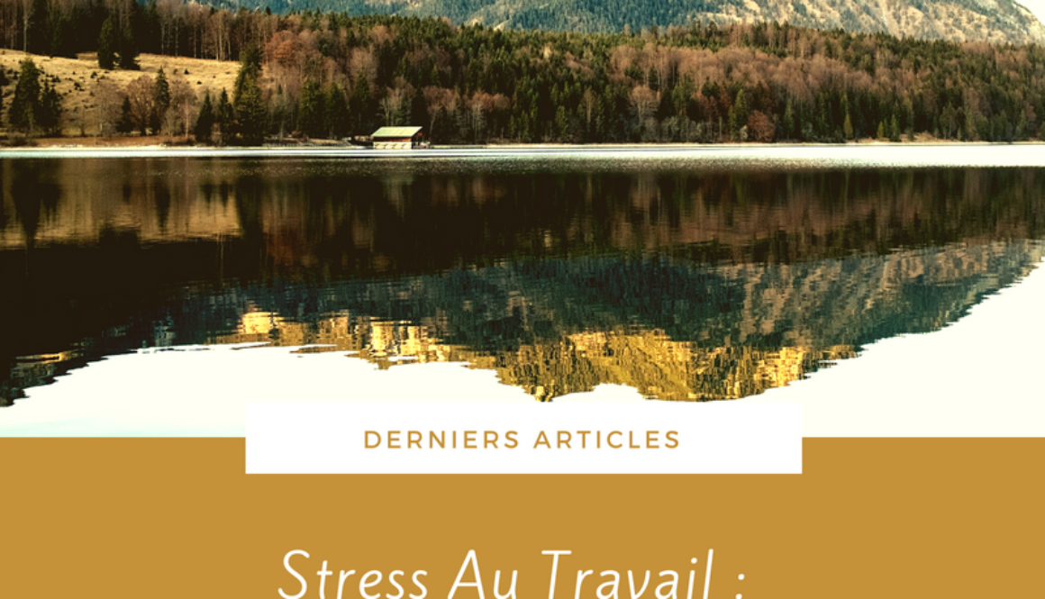 Article Stress Au Travail