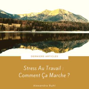 Article Stress Au Travail